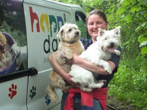 martlesham dog day care
